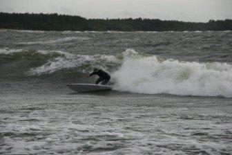 juha surf evolution 2