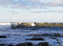 surfetiketti