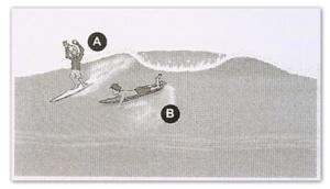 surf etiketti