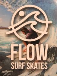 Flow surf skates.JPG