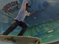 surf hybrid skateboard